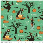 Riley Blake Designs - Halloween - Witch Main in Green